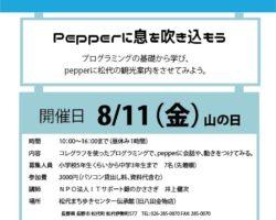 夏休み企画【プログラミング講習会】